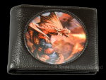 Fire Dragon Wallet